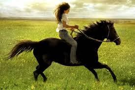 cavalière rousse cheval noir